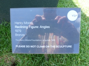 Henry More sign by t r a c y f o x