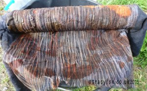 2015 Aug Eco Printing Wool Scarf cooked bundle t r a c y f o x