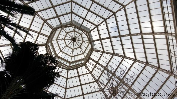 2016 Feb 28 Artisan in The Palm House 5 t r a c y f o x